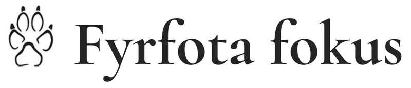 Fyrfota fokus logo