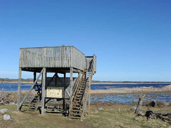 Vendelsjön fågeltorn