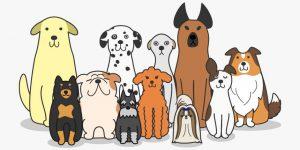 Facebooklogo för Vi med hund i Storvreta